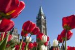 Victoria Day Activities and Schedule Changes